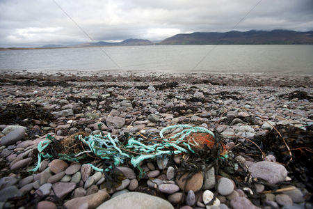 Rope : Rubbish on shore with water in background