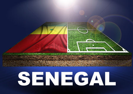 Pitch : Senegal with football field