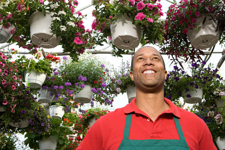 Greenhouse : Shop assistant at a garden centre