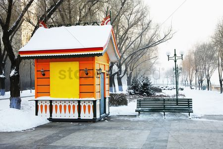 Cold temperature : Snowy park in winter
