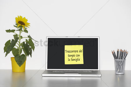 Houseplant : Sunflower plant on desk and sticky notepaper with italian text on laptop screen saying  trascorrere del tempo con la famiglia