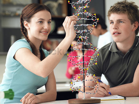 High school : Teenagers working on dna model in science class