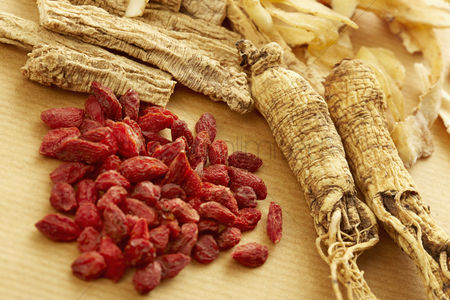 No people : Traditional chinese herbal medicine