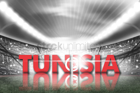 Pitch : Tunisia football stadium