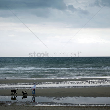 Dogs : Woman walking her dog along the beach