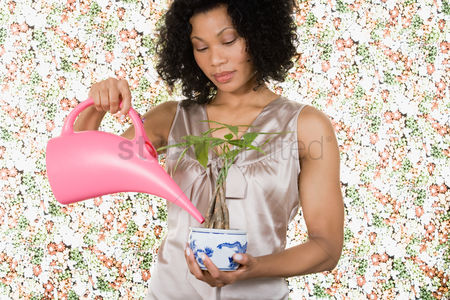 Houseplant : Woman watering houseplant
