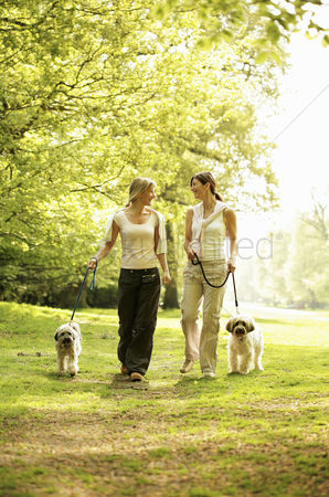 Love : Women and their dogs walking taking a stroll in the park