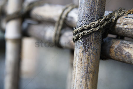 Rope : Wooden fence